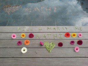 love gerber daisy style