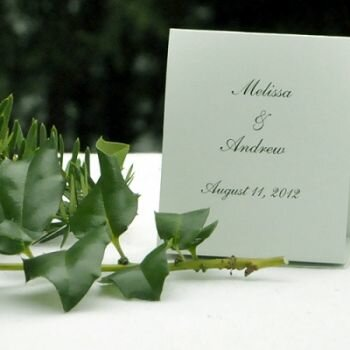 Pistachio - Garden of Color Seed Favors