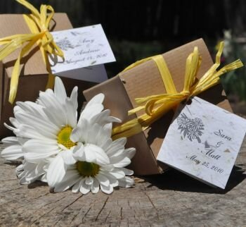 Daisy Favors in Gift Boxes for Baby Showers